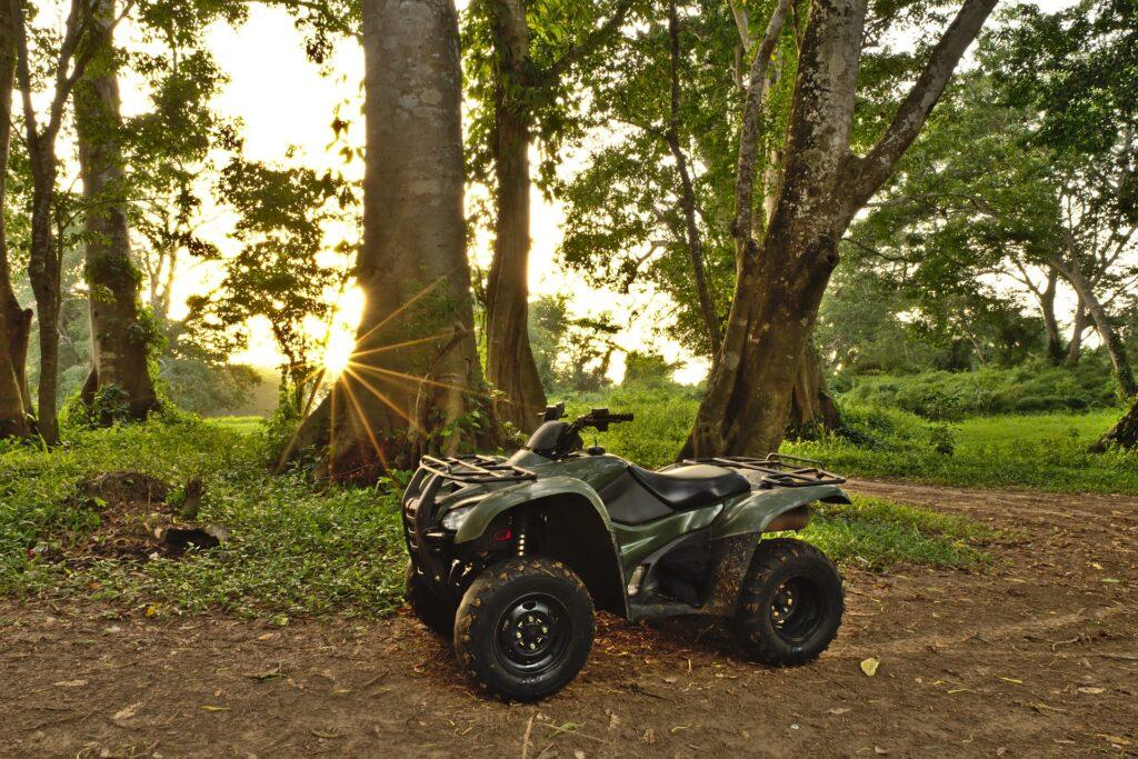 quad op goede banden in het bos